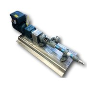 Moyno 2 HP Progressive Cavity Pump